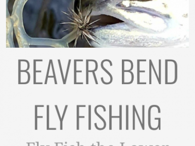fly fishing in beavers bend
